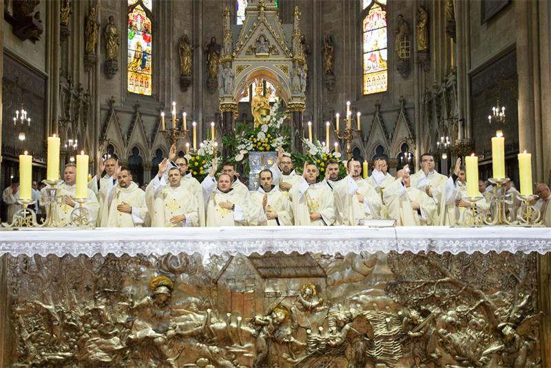 Svećeničko ređenje i zahvalno slavlje za biskupsko služenje mons. Valentina Pozaića 3