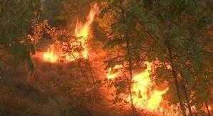 Požar Kistanje
