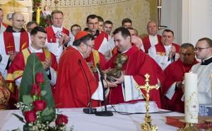 Kardinal Puljić u Krašiću Trebamo obnoviti Stepinčevo svjedočanstvo vjere u Uskrsloga